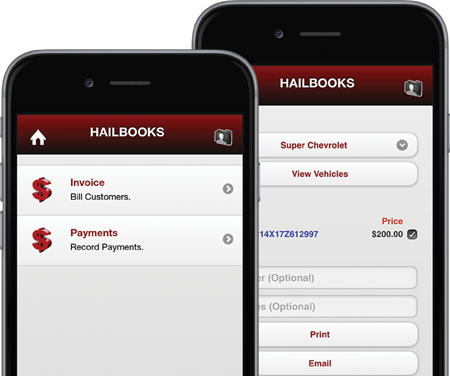 Hailbooks Accounting Screens
