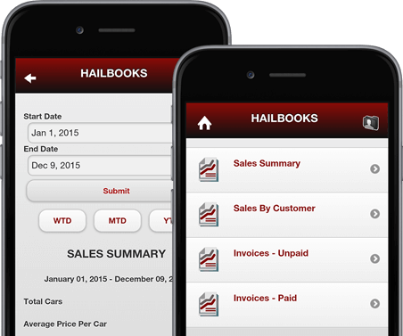 Hailbooks Business Reports Screens